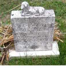 MCCARTY, JAMES WILBERT - Adams County, Ohio | JAMES WILBERT MCCARTY - Ohio Gravestone Photos