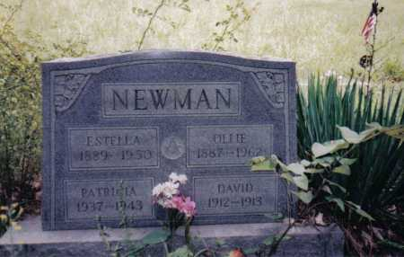 NEWMAN, OLLIE - Adams County, Ohio | OLLIE NEWMAN - Ohio Gravestone Photos