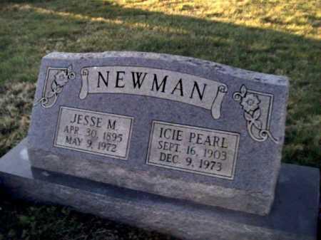 NEWMAN, ICIE PEARL - Adams County, Ohio | ICIE PEARL NEWMAN - Ohio Gravestone Photos