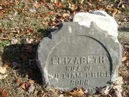 PRICE, ELIZABETH - Adams County, Ohio | ELIZABETH PRICE - Ohio Gravestone Photos