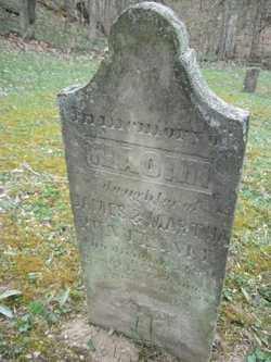 PUNTENNEY, NAOMI - Adams County, Ohio   NAOMI PUNTENNEY - Ohio Gravestone Photos