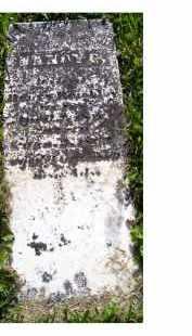 REIGHLEY, NANCY G. - Adams County, Ohio | NANCY G. REIGHLEY - Ohio Gravestone Photos