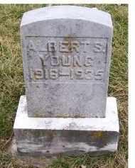 YOUNG, ALBERT S. - Adams County, Ohio   ALBERT S. YOUNG - Ohio Gravestone Photos