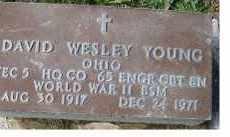 YOUNG, DAVID WESLEY - Adams County, Ohio   DAVID WESLEY YOUNG - Ohio Gravestone Photos