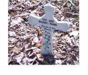 YOUNG, WILBUR I - Adams County, Ohio   WILBUR I YOUNG - Ohio Gravestone Photos