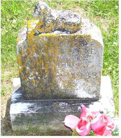 LIMING, CLARENCE E. - Adams County, Ohio | CLARENCE E. LIMING - Ohio Gravestone Photos
