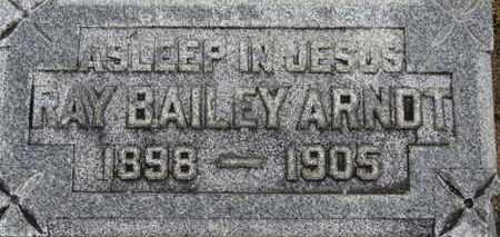 ARNDT, RAY BAILEY - Ashland County, Ohio   RAY BAILEY ARNDT - Ohio Gravestone Photos