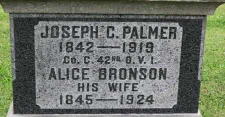 PALMER, ALICE - Ashland County, Ohio | ALICE PALMER - Ohio Gravestone Photos