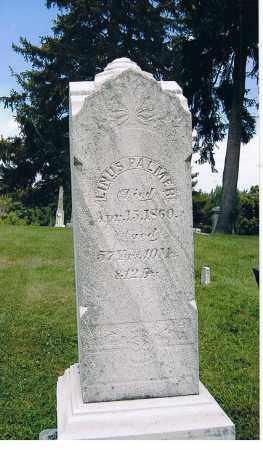 PALMER, LINUS - Ashland County, Ohio | LINUS PALMER - Ohio Gravestone Photos