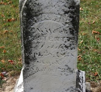 STENTZ, MARY - Ashland County, Ohio | MARY STENTZ - Ohio Gravestone Photos