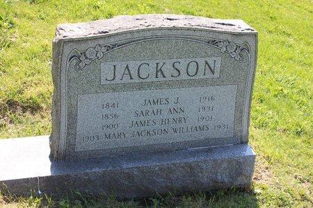 JACKSON, MARY - Ashtabula County, Ohio | MARY JACKSON - Ohio Gravestone Photos