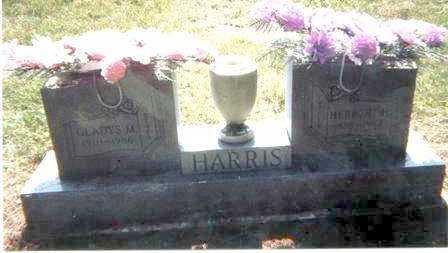 HARRIS, HERBERT - Athens County, Ohio | HERBERT HARRIS - Ohio Gravestone Photos