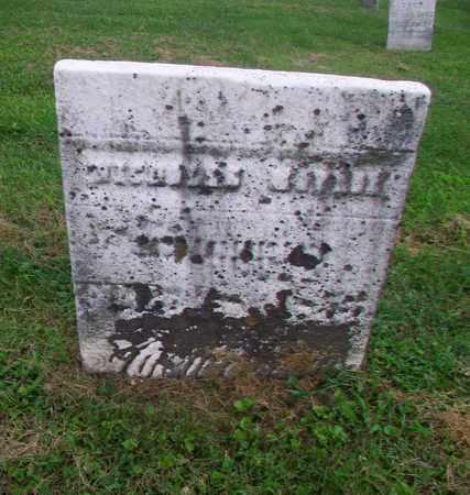 MONROE, NICHOLAS - Belmont County, Ohio   NICHOLAS MONROE - Ohio Gravestone Photos