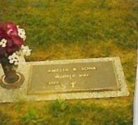 SONK, AMELIA ROSE - Belmont County, Ohio | AMELIA ROSE SONK - Ohio Gravestone Photos