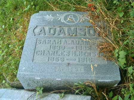 ADAMSON, SARAH  A - Brown County, Ohio   SARAH  A ADAMSON - Ohio Gravestone Photos