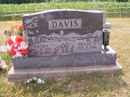DAVIS, VALERIA - Brown County, Ohio   VALERIA DAVIS - Ohio Gravestone Photos
