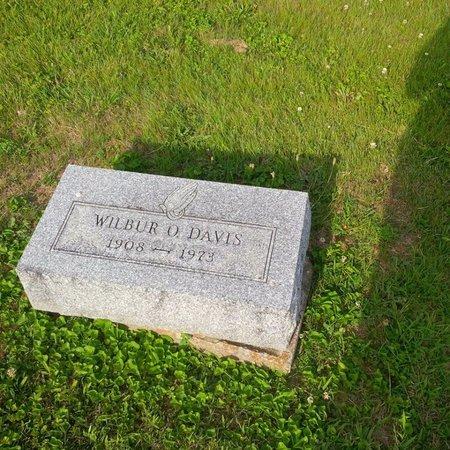 DAVIS, WILBUR - Brown County, Ohio | WILBUR DAVIS - Ohio Gravestone Photos