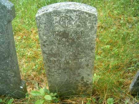 WOODS, MICHAEL - Brown County, Ohio | MICHAEL WOODS - Ohio Gravestone Photos