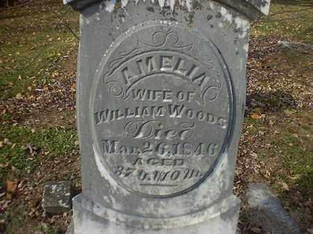 WOODS, AMELIA - Brown County, Ohio | AMELIA WOODS - Ohio Gravestone Photos
