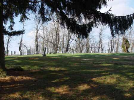 ALLEN MEMORIAL CEMETERY, OVERALL VIEW - Carroll County, Ohio | OVERALL VIEW ALLEN MEMORIAL CEMETERY - Ohio Gravestone Photos