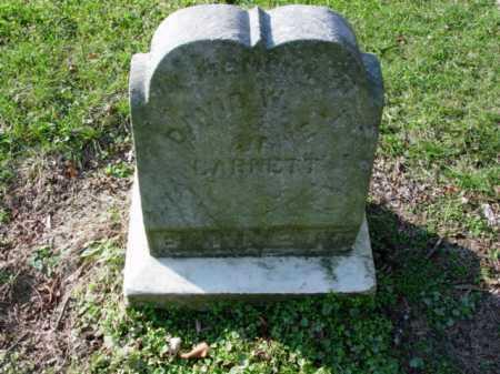 BARNETT, DAVID W. - Carroll County, Ohio   DAVID W. BARNETT - Ohio Gravestone Photos
