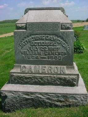 CAMERON, CATHERINE - Carroll County, Ohio | CATHERINE CAMERON - Ohio Gravestone Photos
