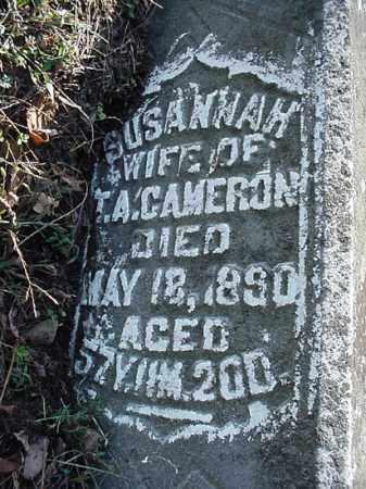 CAMERON, SUSANNAH - Carroll County, Ohio | SUSANNAH CAMERON - Ohio Gravestone Photos