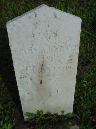 CARTER, MARY A. - Carroll County, Ohio | MARY A. CARTER - Ohio Gravestone Photos