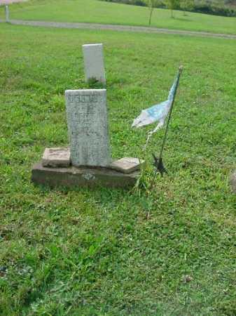 MCGUIRE, DENNIS MONUMENT - Carroll County, Ohio | DENNIS MONUMENT MCGUIRE - Ohio Gravestone Photos
