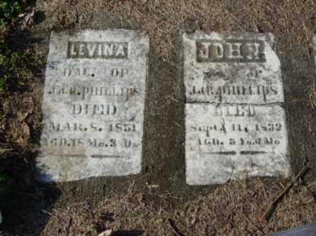 PHILLIPS, LEVINA - Carroll County, Ohio   LEVINA PHILLIPS - Ohio Gravestone Photos