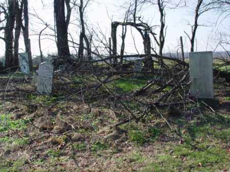 STONES, COVERED W/TREE BRANCHES - Carroll County, Ohio   COVERED W/TREE BRANCHES STONES - Ohio Gravestone Photos