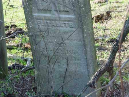 THOMPSON, ELIZABETH - Carroll County, Ohio | ELIZABETH THOMPSON - Ohio Gravestone Photos