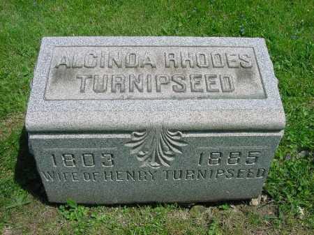 RHODES TURNIPSEED, ALCINDA - Carroll County, Ohio   ALCINDA RHODES TURNIPSEED - Ohio Gravestone Photos