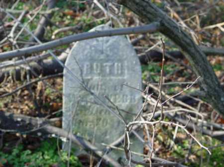 WEBB, RUTH - Carroll County, Ohio | RUTH WEBB - Ohio Gravestone Photos