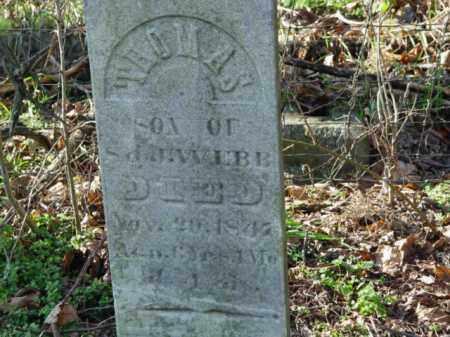 WEBB, THOMAS - Carroll County, Ohio   THOMAS WEBB - Ohio Gravestone Photos