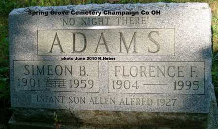 ADAMS, ALLEN ALFRED - Champaign County, Ohio | ALLEN ALFRED ADAMS - Ohio Gravestone Photos