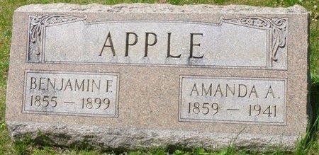 APPLE, AMANDA ALICE - Champaign County, Ohio   AMANDA ALICE APPLE - Ohio Gravestone Photos