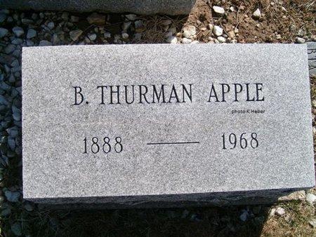 APPLE, BENJAMIN THURMAN - Champaign County, Ohio | BENJAMIN THURMAN APPLE - Ohio Gravestone Photos