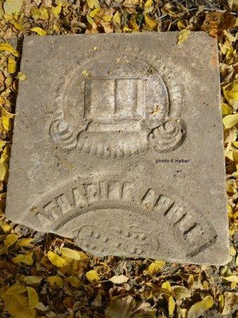 APPLE, CATHERINE - Champaign County, Ohio   CATHERINE APPLE - Ohio Gravestone Photos