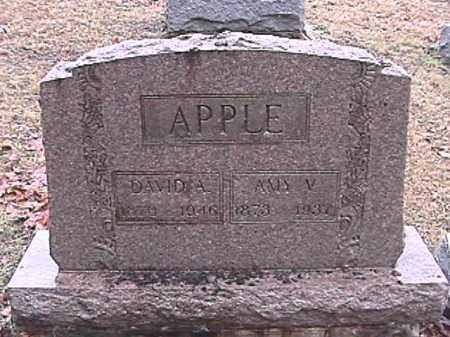 APPLE, DAVID ALFRED - Champaign County, Ohio | DAVID ALFRED APPLE - Ohio Gravestone Photos