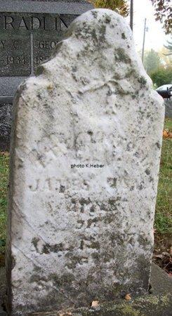 APPLE, ETTA VICTORIA - Champaign County, Ohio   ETTA VICTORIA APPLE - Ohio Gravestone Photos