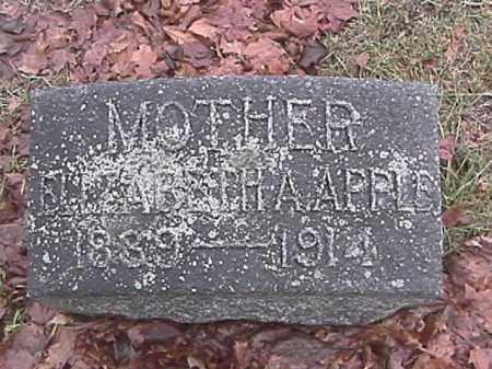 APPLE, ELIZABETH - Champaign County, Ohio   ELIZABETH APPLE - Ohio Gravestone Photos