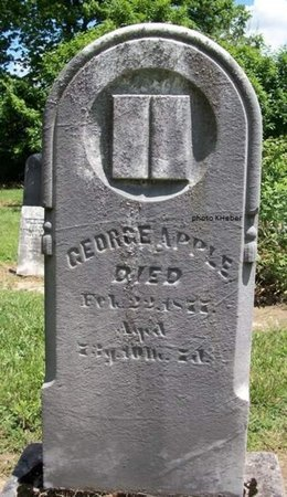 APPLE, GEORGE - Champaign County, Ohio | GEORGE APPLE - Ohio Gravestone Photos