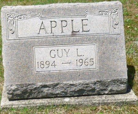 APPLE, GUY LOREN - Champaign County, Ohio | GUY LOREN APPLE - Ohio Gravestone Photos