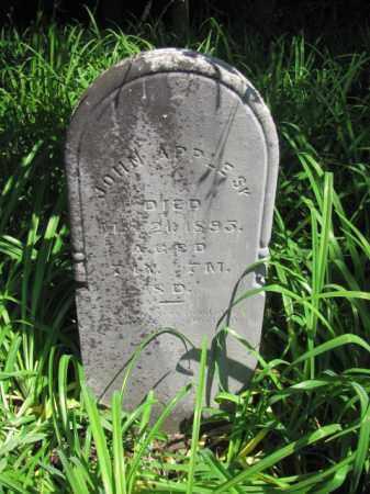 APPLE, JOHN - Champaign County, Ohio | JOHN APPLE - Ohio Gravestone Photos