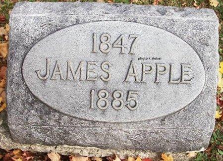 APPLE, JAMES - Champaign County, Ohio | JAMES APPLE - Ohio Gravestone Photos