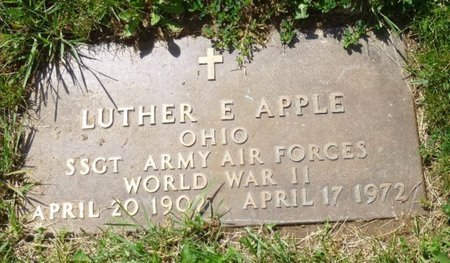 APPLE, LUTHER EMERSON - Champaign County, Ohio | LUTHER EMERSON APPLE - Ohio Gravestone Photos