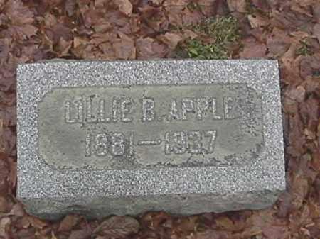 APPLE, LILLIE - Champaign County, Ohio   LILLIE APPLE - Ohio Gravestone Photos