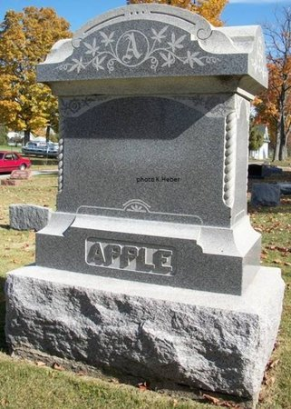 APPLE, MONUMENT - Champaign County, Ohio | MONUMENT APPLE - Ohio Gravestone Photos