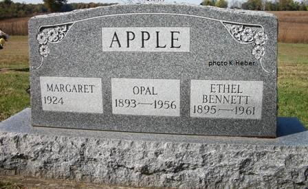 APPLE, MARGARET - Champaign County, Ohio | MARGARET APPLE - Ohio Gravestone Photos